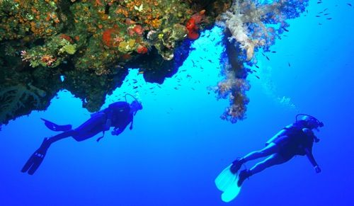 red-sea-diving